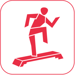 gallery/icon_step-aerobic_rot_auf_weiss_250px